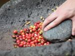 Coffee Price Lows